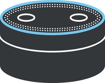 The Rise of Amazon Echo